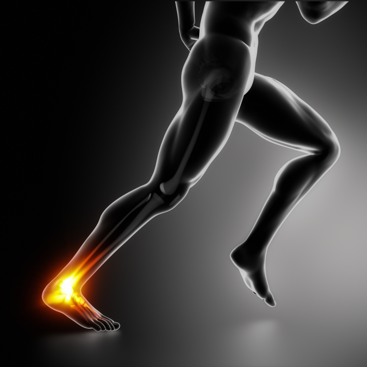heel pain march newsletter